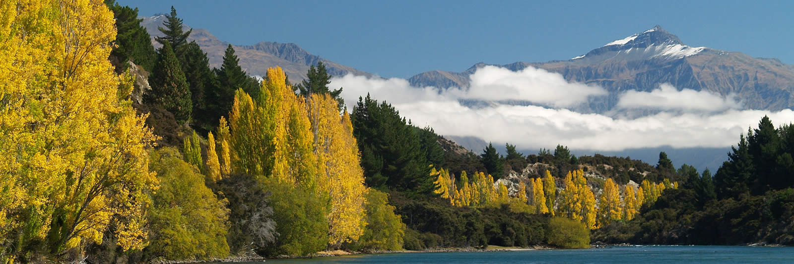 Outlet Track views on Eco Wanaka Guided Walks