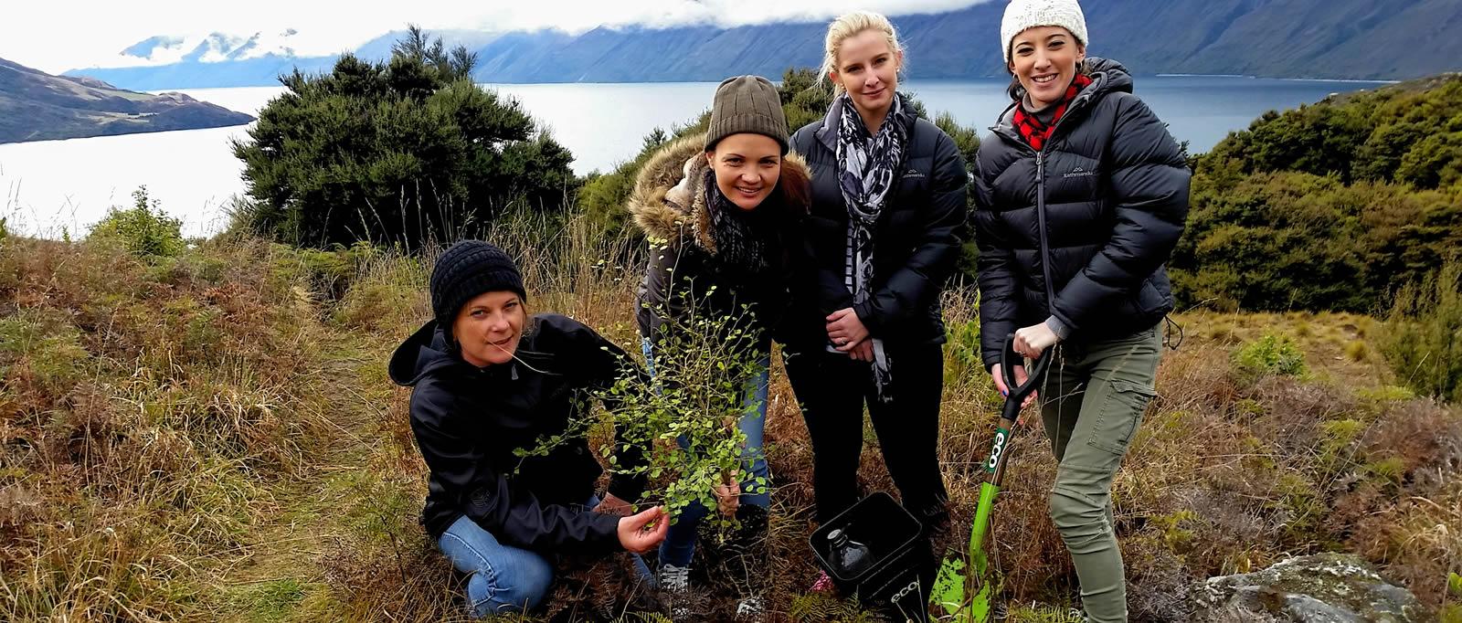 Mou Waho Island native tree planting
